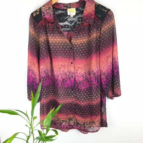 a5ff1196628c8b Anthropologie Tops - Anthropologie Fig & Flower Sheer Blouse Size 1X